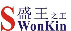 乐清市盛王照明电器有限公司Logo