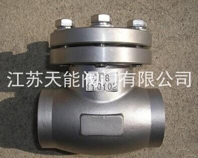 dh61f-16p不锈钢低温止回阀图片
