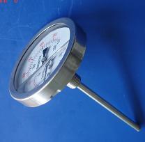 WSSN系列耐震雙金屬溫度計