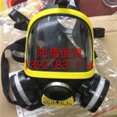 DF-02全面罩防毒面具
