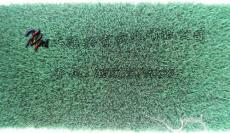 兴育绿绒布 BO-903带胶绿绒糙面带